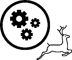 gazell företag